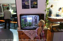 Fernseher_Aquarium_Leihgabe_Regenwaldtage_1