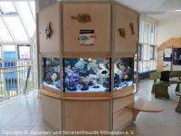 Kinderklinik-Aquarium_Wartungsarbeiten_0