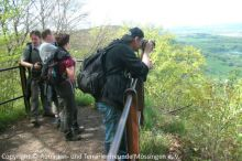 04_Maiwanderung_Gruener-Fels