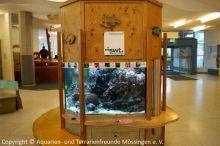 07_Das_alte_Aquarium